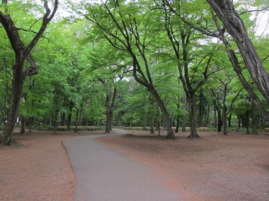 井の頭公園04.jpg